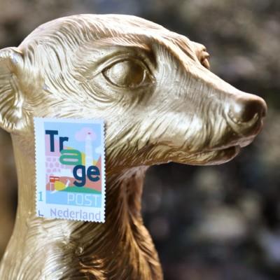 TragePost wint gouden stokstaartje